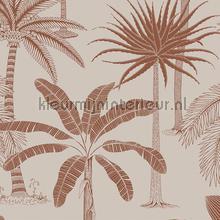 royal tapet Hookedonwalls Jungle Jive 36501
