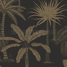 royal tapet Hookedonwalls Jungle Jive 36502