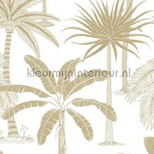 royal tapet Hookedonwalls Jungle Jive 36504