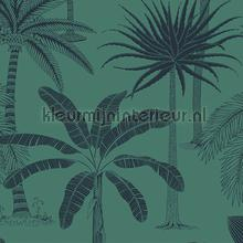 royal tapet Hookedonwalls Jungle Jive 36505