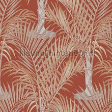 palma tapet Hookedonwalls Jungle Jive 36530