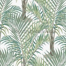 palma tapet Hookedonwalls Jungle Jive 36531