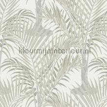 palma tapet Hookedonwalls Jungle Jive 36533