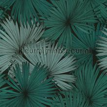 Coconut palm wallcovering Caselio all images