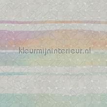 Riga Bangalore carta da parati Arte JV 601 Kerala 5640