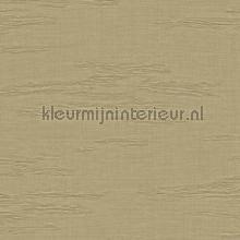 Unito Kyoto behaang Arte JV 601 Kerala 5664
