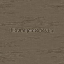 Unito Kyoto behaang Arte JV 601 Kerala 5665
