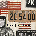 Kentekenplaten USA styles
