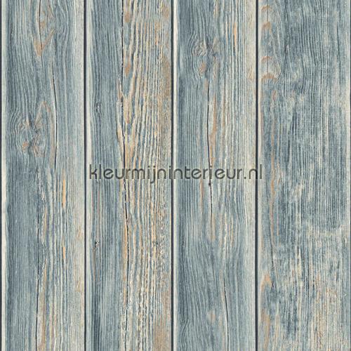 Gebeitste plankenvergrijs blauwgrijs lichtbruin carta da parati J86809 legno Dutch Wallcoverings