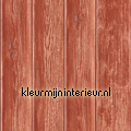Gebeitste planken rood Kaleidoscope dutch wallcoverings