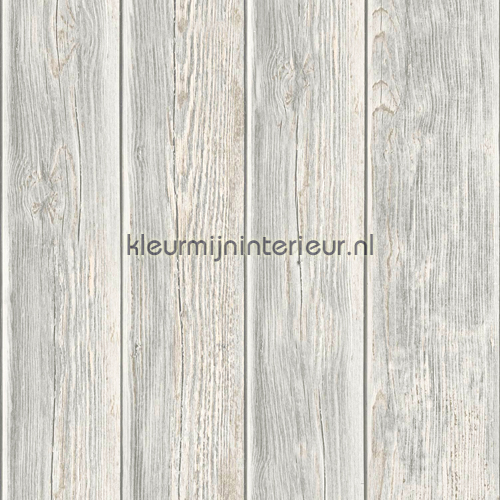 Gebeitste planken carta da parati J86817 legno Dutch Wallcoverings