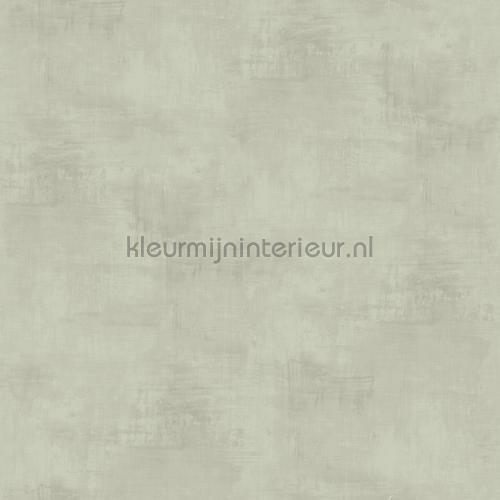 Genoeg Kalk effect licht grijsgroen 61017 behang Kalk Dutch Wallcoverings &TG46
