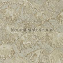 Iliad fossil tapet Zoffany Kempshott Wallcoverings 312634