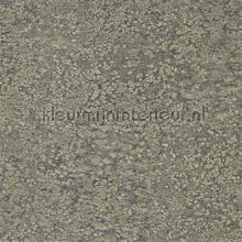 Weathered Stone Plain tapet Zoffany Kempshott Wallcoverings 312642