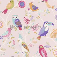 Kleur vogels behang Rasch meisjes