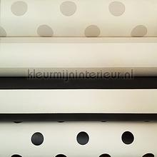 Strepen en stippen knutselpakket wallcovering Kleurmijninterieur wallpaperkit