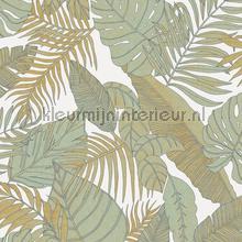 Tropical papier peint Khroma spécial