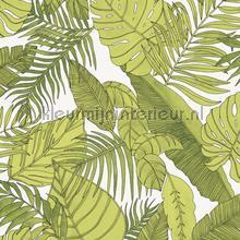Tropical tapet Khroma Vintage Gamle