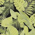 tropical motivi ispirazione