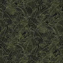Musa papier peint Khroma spécial