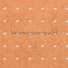 Dots lichtgrijs op zalm behang Arte Le Corbusier 31024