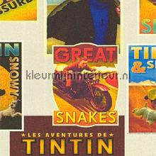 TinTin behang Noordwand jongens
