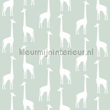 Giraffen mintgroen papel pintado Esta for Kids Wallpaper creations