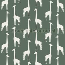Giraffen donkergroen tapeten Esta for Kids Wallpaper creations