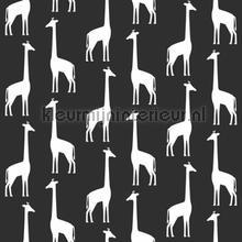 Giraffen zwart wit tapeten Esta for Kids Wallpaper creations