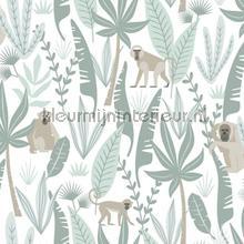 Apen tapeten Esta for Kids Wallpaper creations