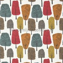 Cedar tangerine curtains Scion Levande 120356