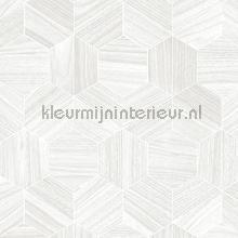Hive behang Arte Ligna 42033