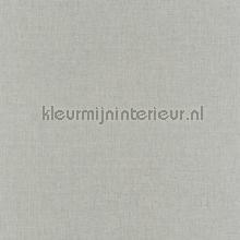 65253 tapet Caselio Linen INN68526110