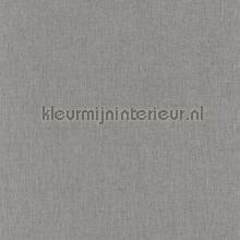 Linnenlook grijs-lichtgrijs tapet Caselio Linen INNLINN68529432