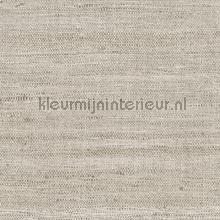Lignes papier peint Arte Lino 40511