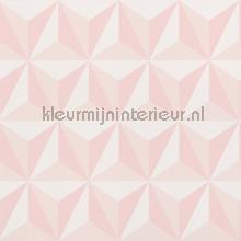 Grafisch 3d lichtroze wallcovering Esta for Kids girls