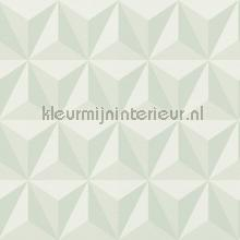 Grafisch 3d mint wallcovering Esta for Kids girls