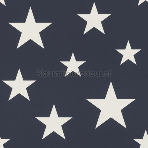 Middelgrote sterren