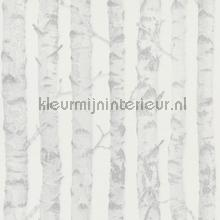 Berken boomstammen zilver wallcovering Esta for Kids girls
