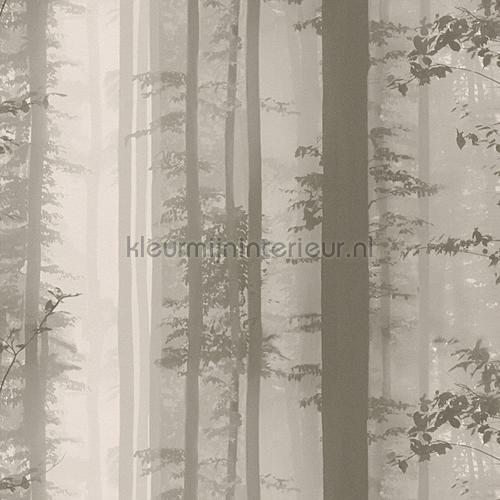 Forest behang 30060-2 aanbieding behang AS Creation