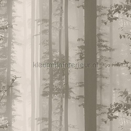 Forest tapeten 30060-2 sonderangebote tapeten AS Creation