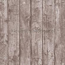 Combi hout behang AS Creation meisjes