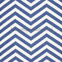 Vector Indigo voile curtains Scion teenager