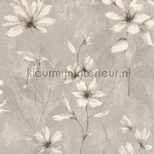 Lichte aquarel bloem papel de parede Rasch Lucera 608465