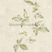 Lichte aquarel bladerrank behang Rasch Lucera 608847