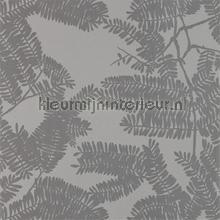 Extravagance Platinum tapet Harlequin Lucero 111717