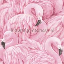 Pink flamingos behang Rasch Lucy in the Sky 803211
