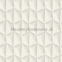 3d piramid grid white tapeten AS Creation Mac Stopa 327081