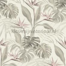 Exotische paradijsvogelbloem papel de parede Rasch Mandalay 529005