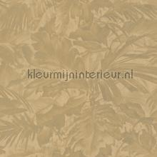 Exotische bladcombi papel de parede Rasch Mandalay 529234